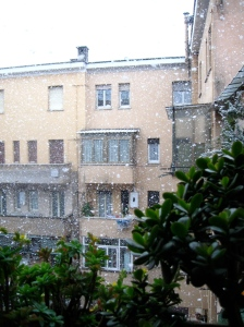 View from the balcony outside my room in Rome on a rare, snowy morning. A good day for soup making.