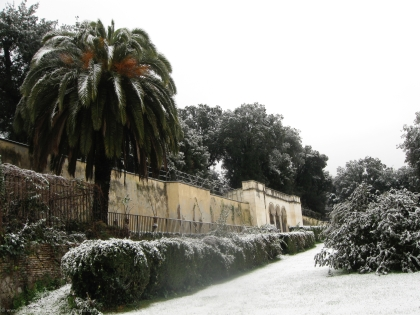Flora in the Villa Borghese park gets a rare taste of a colder sort of winter