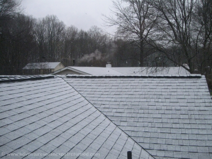 Snow-dusted roofs in the early morning
